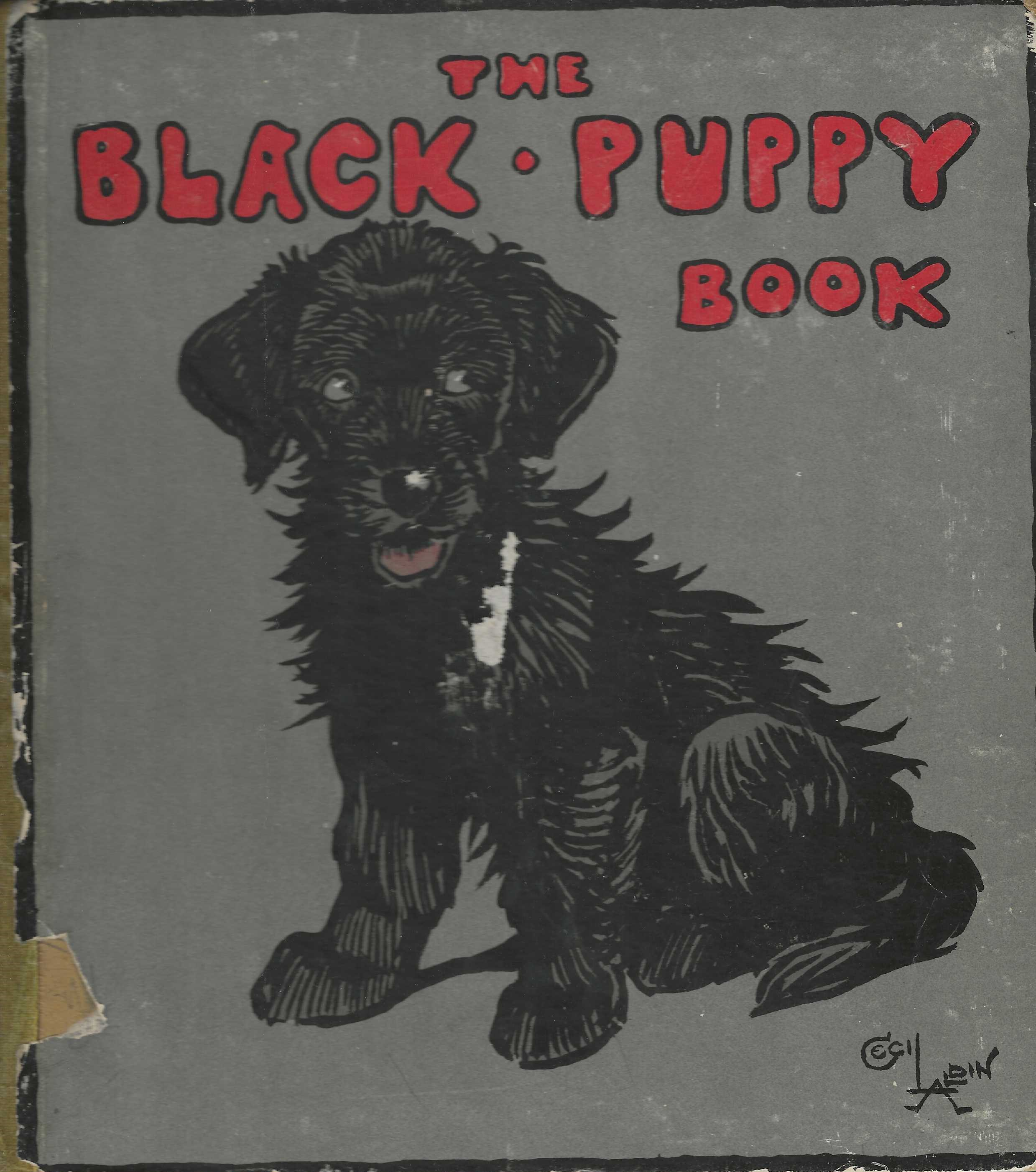 Image for The Black Puppy Book.